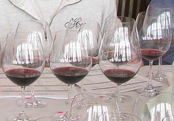 For the general consumer, it appears that the two sides of Carneros are both on display in the 2003 Pinots.